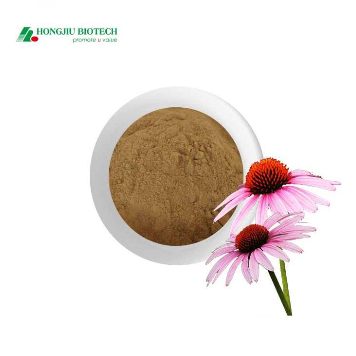 Echinacea Extract Powder