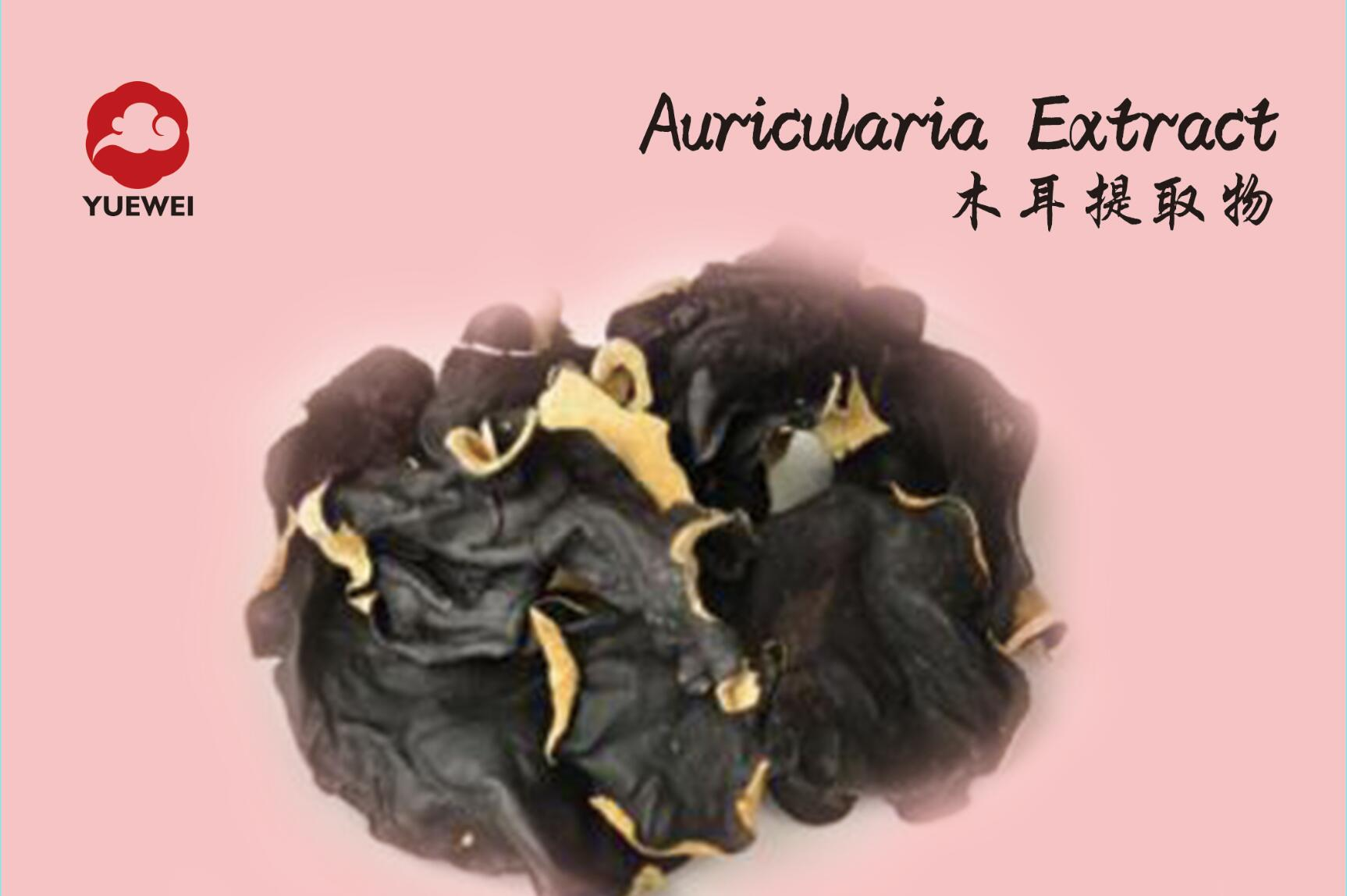 AURICULARIA EXTRACT