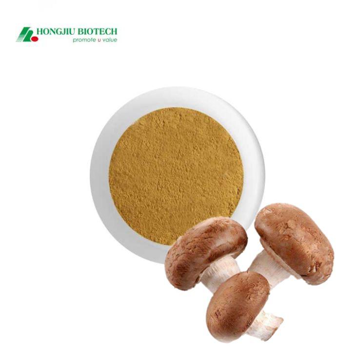 Shiitake Mushroom Extract Powder