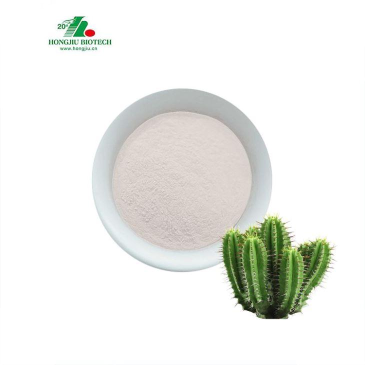 Hoodia Gordonii Cactus Extract Powder