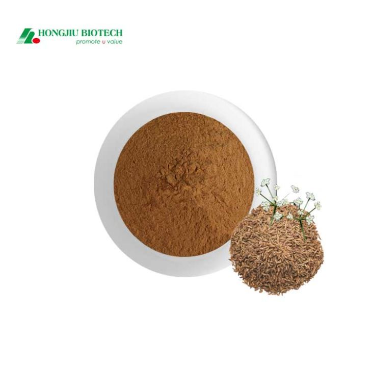 Carum Carvi Extract Powder