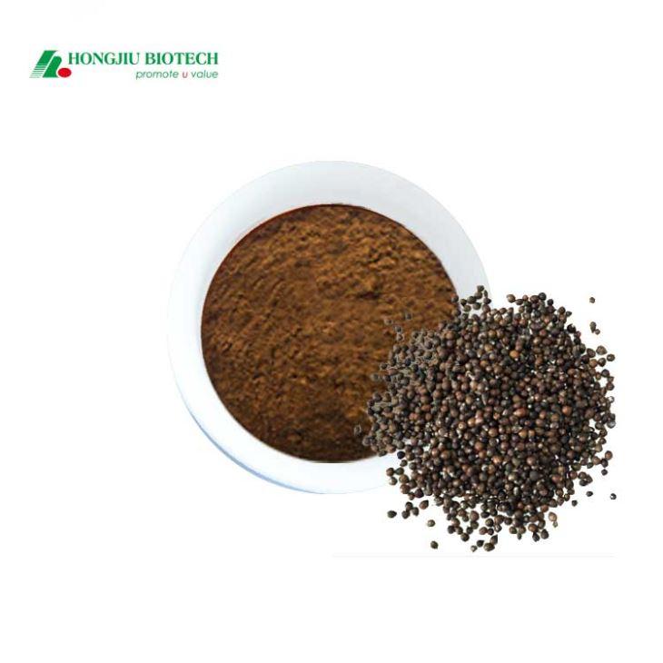 Lagundi Extract Powder