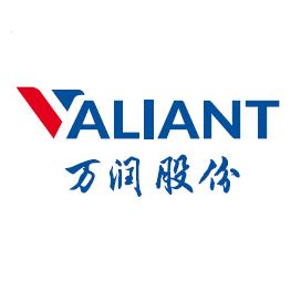 Valiant CO.,Ltd