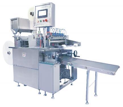 Hob type Hydrogel/Cataplasm Coating&Cutting Machine Model ST-I