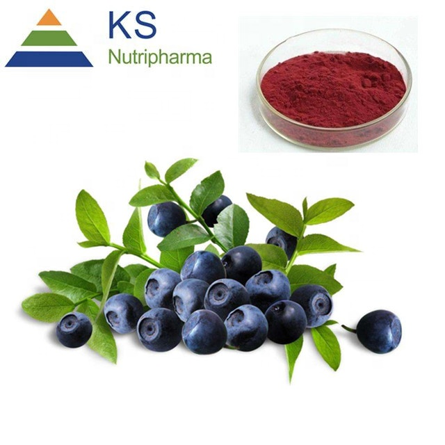 Bilberry extract #T