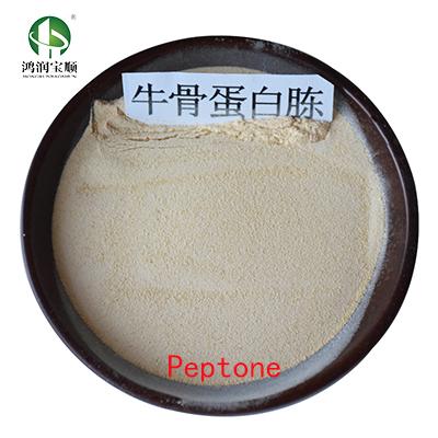 Bacteriological Peptone Y001G