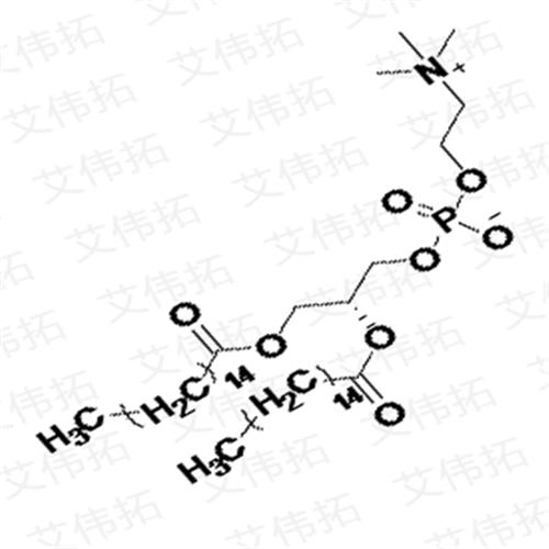 DPPC Dipalmitoyl Phosphatidylcholine