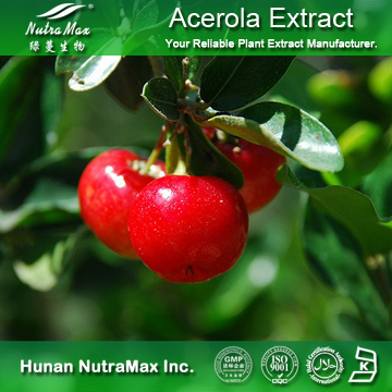 100%Nutramax Supplier - Acerola Cherry Extract