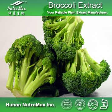 100%Nutramax Supplier - Broccoli extract. 0.5% 2% 10% 20%Sulforaphen