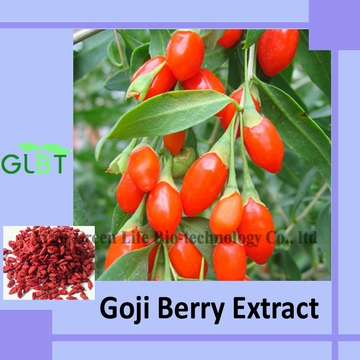 Goji Berry Extract