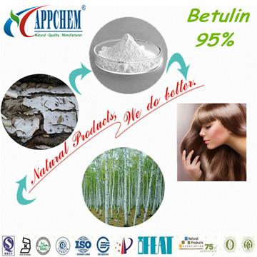 Betulin powder