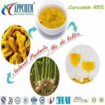 Curcumin 95% powder