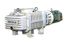 (2XZ) Vacuum Pump Bipolar Chip