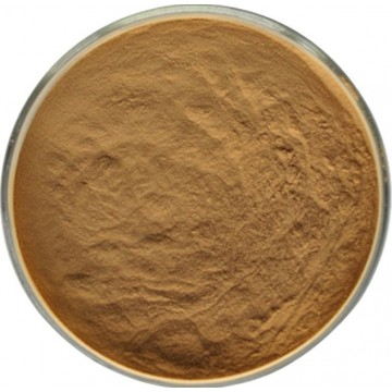 Trametes Versicolor Extract Powder 10% UV