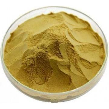 Citrus Aurantium Extract Powder 0.1%