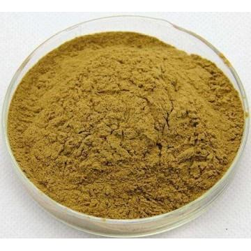 Citrus Aurantium Extract Powder 6%