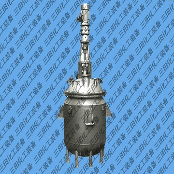 Stainless steel reactor 1