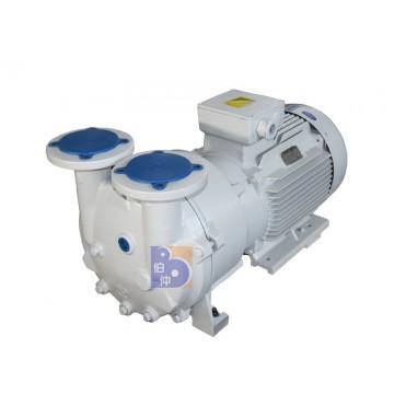 2 BV5131 water ring vacuum pump