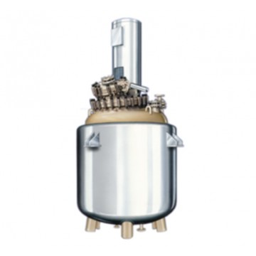 glass lined reactor with stainless steel outer surface
