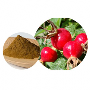 Rosehips Extract