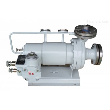 canned motor pump