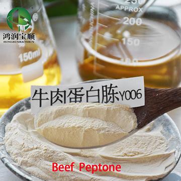 Beef Peptone