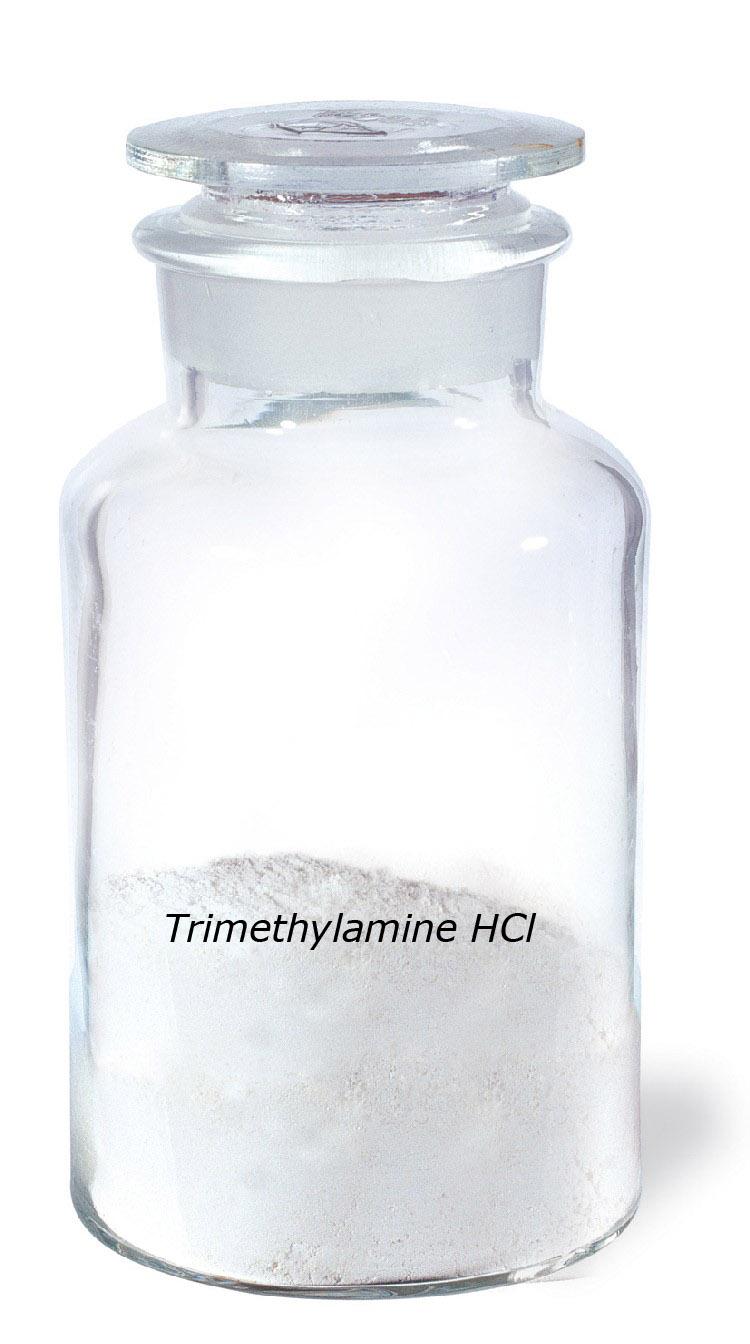 trimethylamine hydrochloride